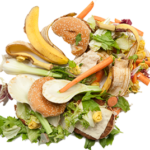Food Waste Prevention:        In-Home Solutions
