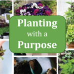 Planting with a Purpose!